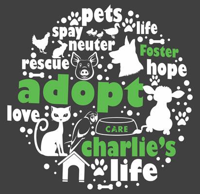 Adopt Hoodie (Charcoal Grey)