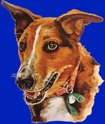 Charlie Hoodie (Royal Blue)