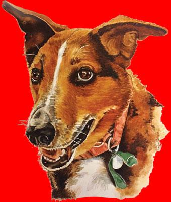 Charlie Hoodie (Red)