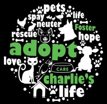 Adopt Hoodie (Black)